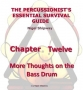 Bass Drum - More Thoughts