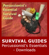 survival-guides-percussion-zone